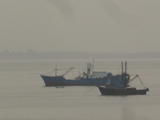 Fishing Vessels in the Gulf of Guinea